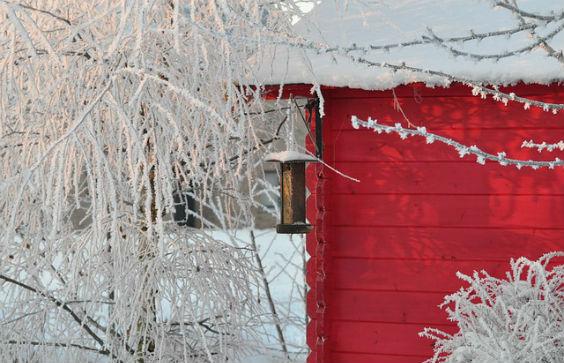 gartenhaus schnee rot 564
