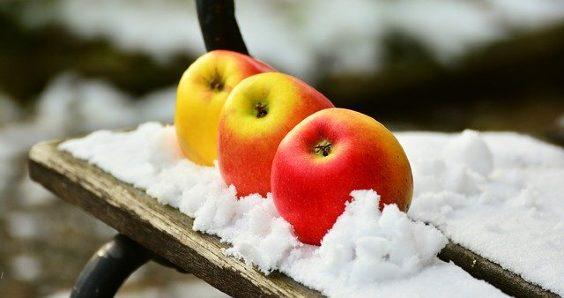 aepfel schnee bank garten