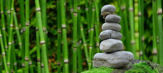 bambus zen steine 4 564