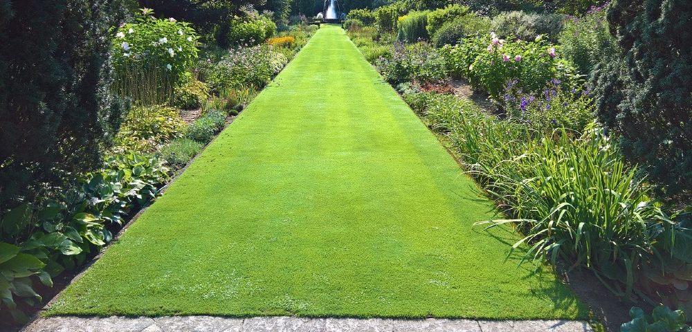 englische rasenkante green 1000