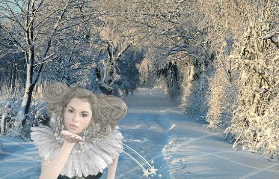 fee winter wald 564