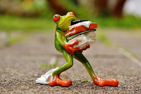 frosch stress akten tt 564