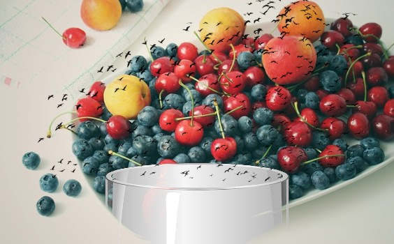 fruchtfliegen obst glas i