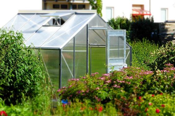 gewaechshaus kleingarten h6 564