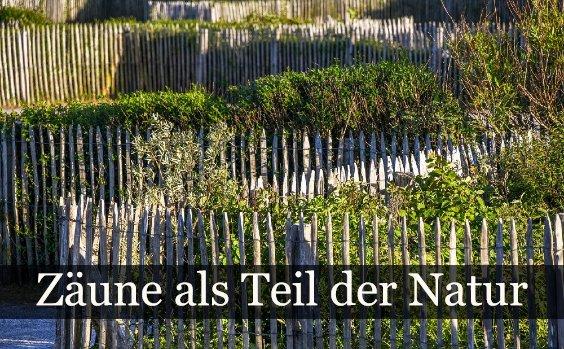 Natu00fcrlicher Gartenzaun