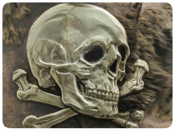 pirat 564