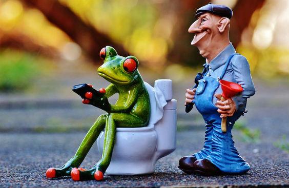 verstopft frosch sanitaer io 564