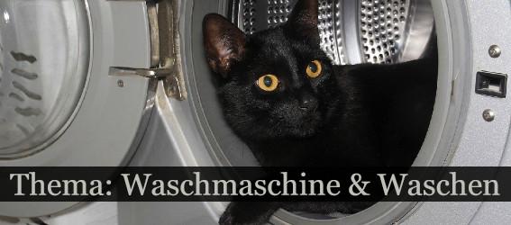 waschmaschine waschen thema 250