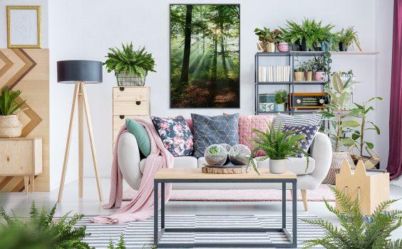 Fru00fchlingsbilder und Pflanzen im Haus