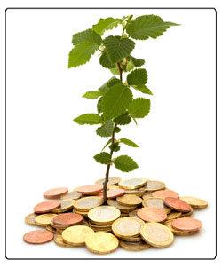 Bei Einhaltung von Ökostandards ist die Baufinanzierung günstiger